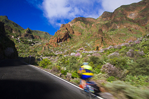 The Guayadeque valley in east Gran Canaria