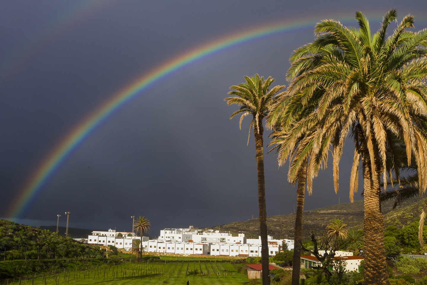 Agaete Valley rainbow and palms