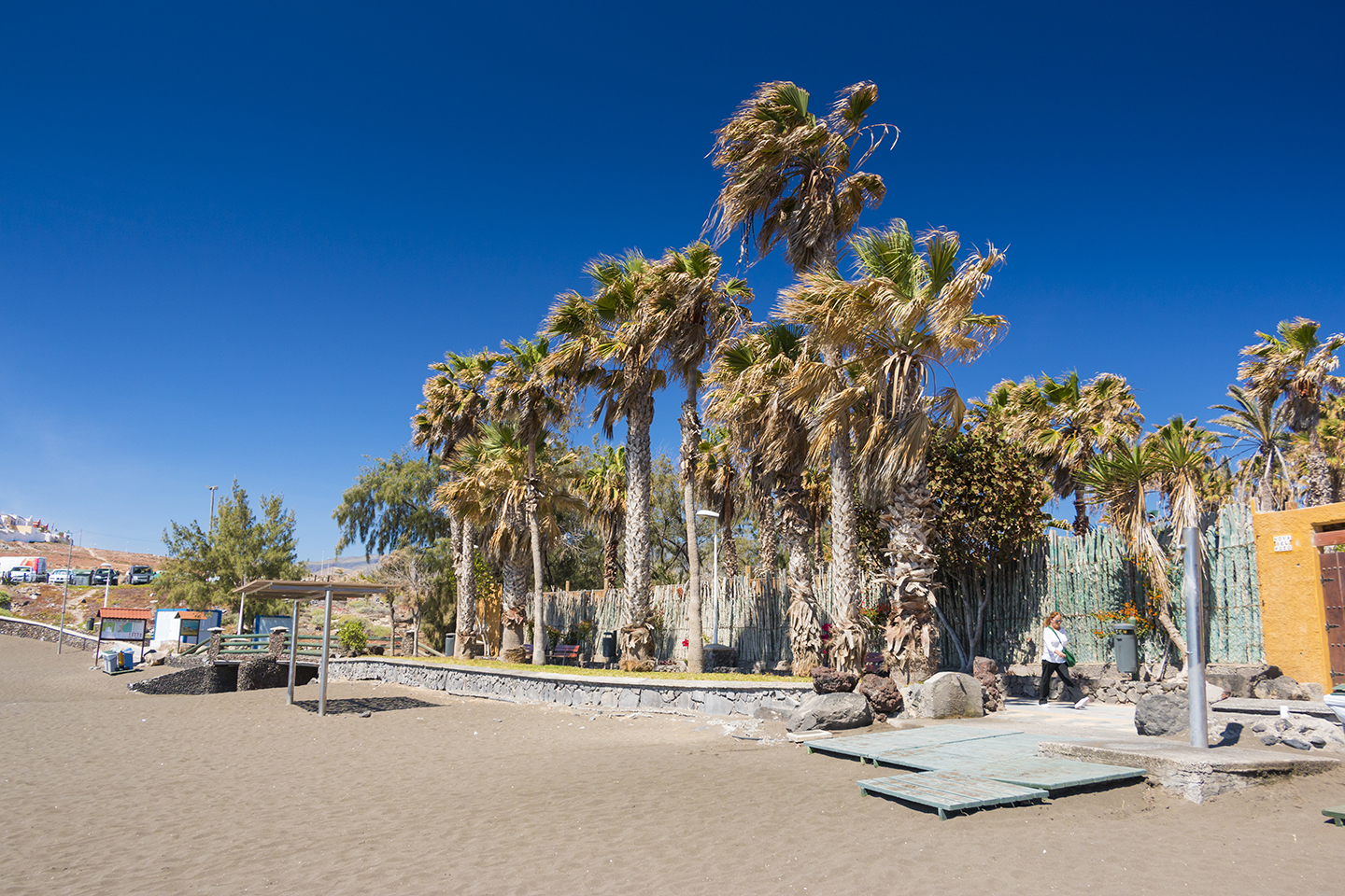 Hoya del Pozo beach with palm trees