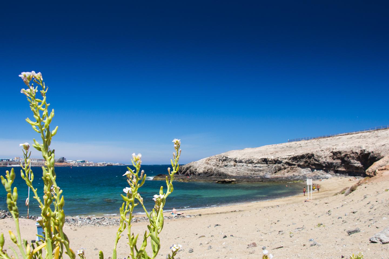 Nudist Beach Experiences - Gran Canaria Info - Gran Canaria In Focus: 10 Top Nudist ...