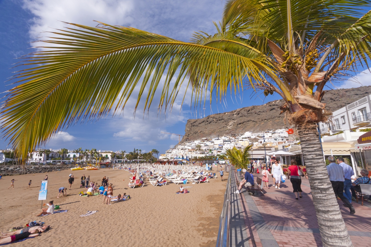 Puerto de Mogán beach and palm trees