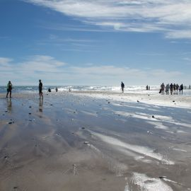 maspalomas_dunes_and_beach_-_febr_2011_-020