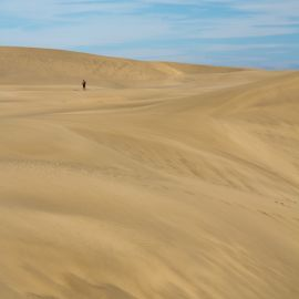 maspalomas_dunes_and_beach_-_febr_2011_-044