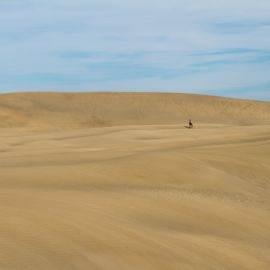 maspalomas_dunes_and_beach_-_febr_2011_-046