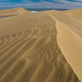 maspalomas_dunes_and_beach_-_febr_2011_-051