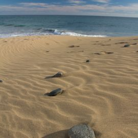 maspalomas_dunes_and_beach_-_febr_2011_-057
