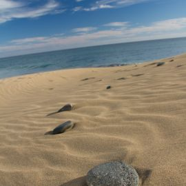 maspalomas_dunes_and_beach_-_febr_2011_-058