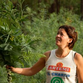 Rama-chica-2011-34