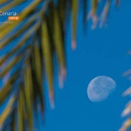 The moon over Gran Canaria_20