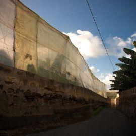 gldar-walking-yacimiento-086