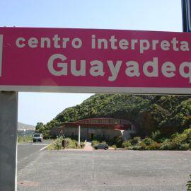 guayadeque-005