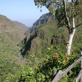 Guayadeque