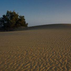 maspalomas_dunes_beach-300