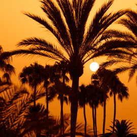 Sunset near the Dunes_1