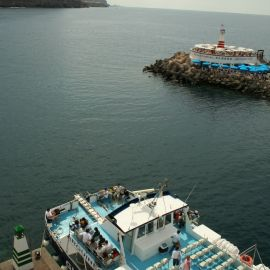 ferry-mogan-blue-bird-027