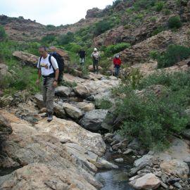 Hiking (walking - trekking)