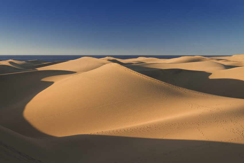 Access to be restriced to marked trails in the Maspalomas dunes in Gran Canaria