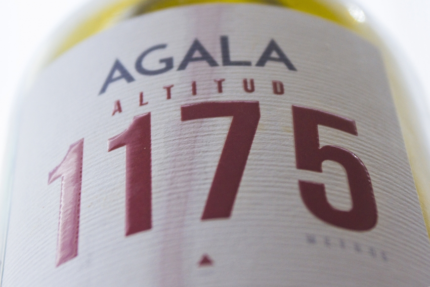 The fantastic high altitude Agala tinto from Gran Canaria