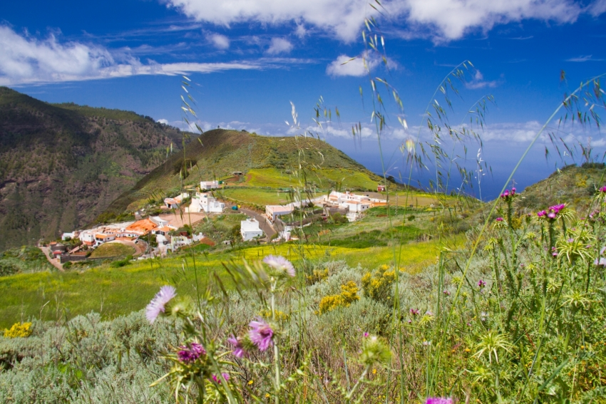 Fagajesto village and flowers on the GC 220 road in northwest Gran Canaria