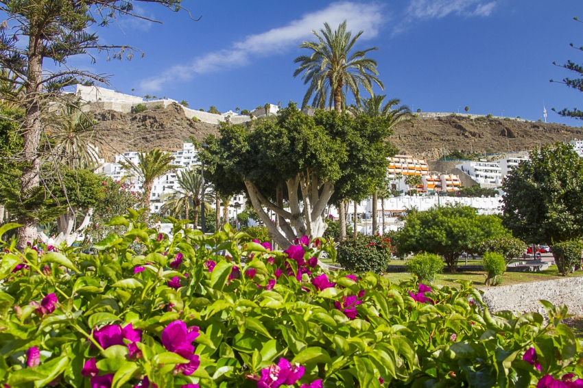 Gran Canaria Weather: Hotter In London Than The Canary Islands?