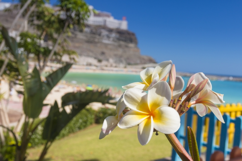 Great reasons to visit Gran Canaria