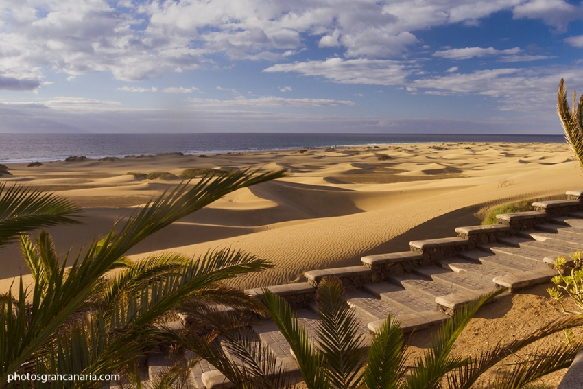 Porretta Soul Festival to be held in Maspalomas in August