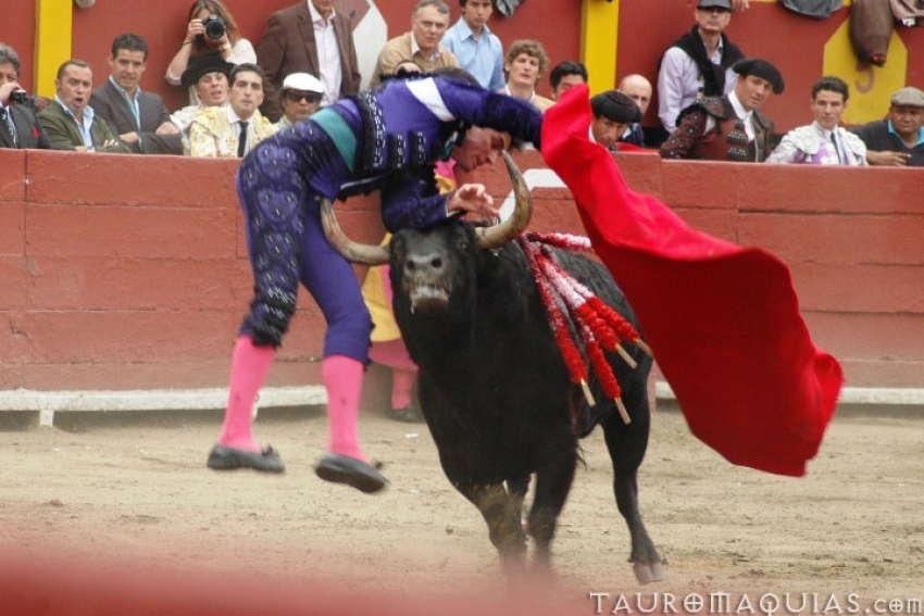 Bullfighting is illegal in the Canary Islands