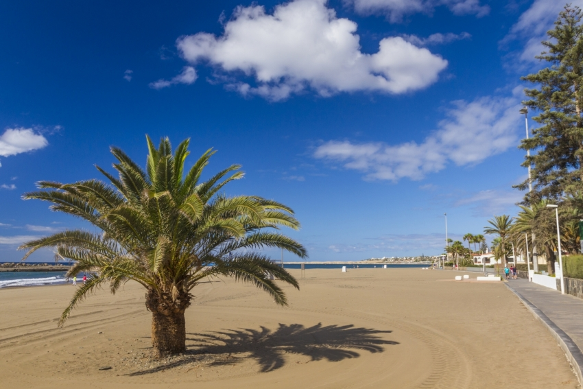 Canarian economy to grow in 2016