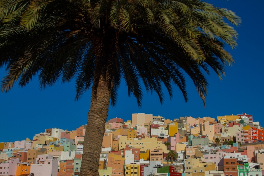 The Spanish Conquistador was born in the shade of Las Palmas' palm trees