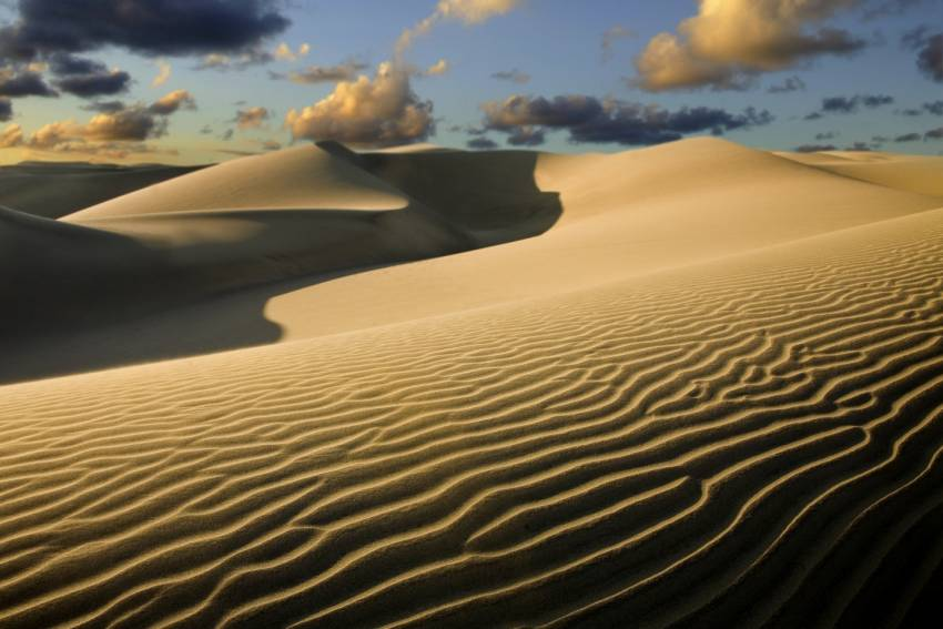 The Maspalomas dunes: A must visit attraction in Gran Canaria