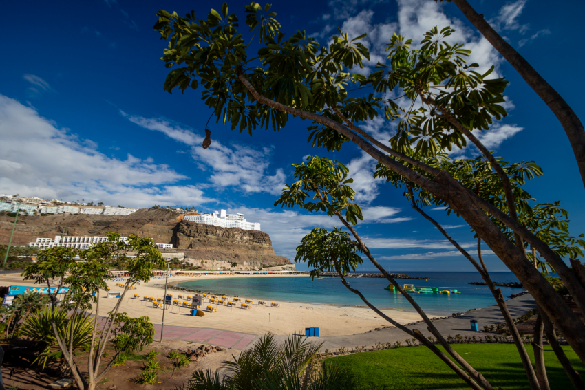 Tourist-free Gran Canaria reports first Covid-19 free day since March 9