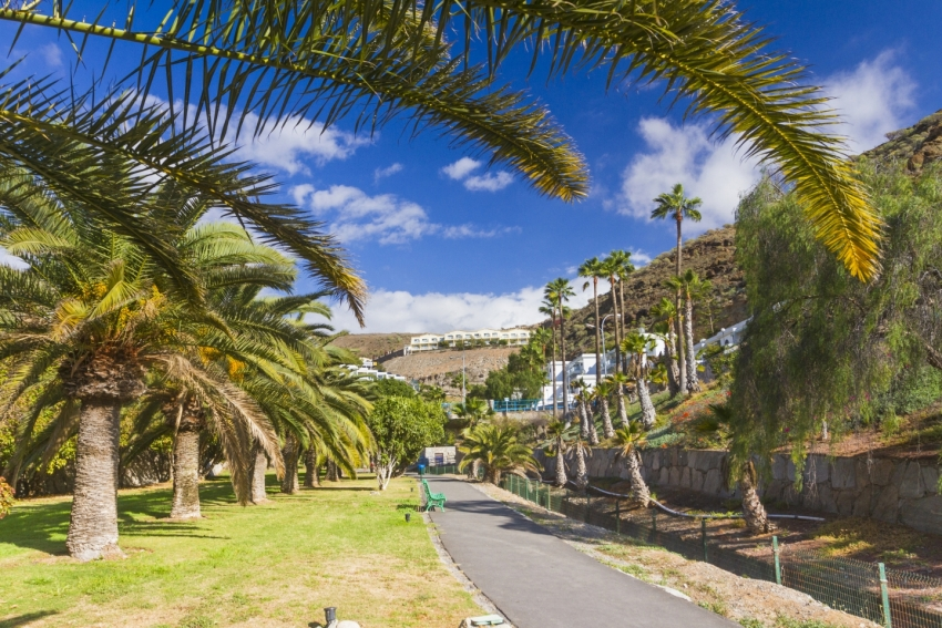 A sunny week coming up in Gran Canaria